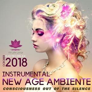 VA - New Age Ambiente: Instrumental Collection (2018)
