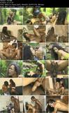 She-Males Hardons - Venus Of Sex (2001)