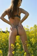 http://img243.imagevenue.com/loc395/th_377211857_Elave_Natasha_S_0034_123_395lo.jpg