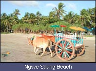 Ngwe Saung Beach ( Arrawaddy Division ) Th_74620_ngwesaung_03_122_442lo