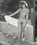 Amanda seyfried bikini pics